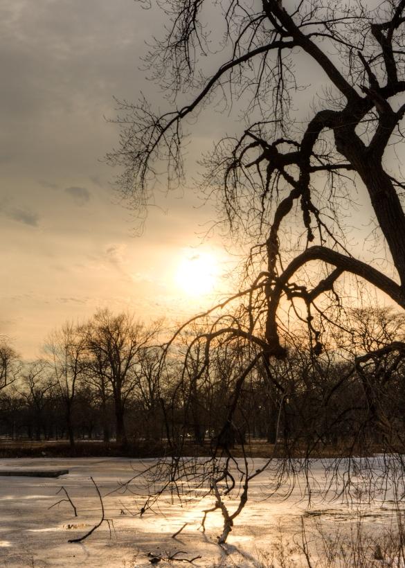 Washington Park (Thomas Oord)